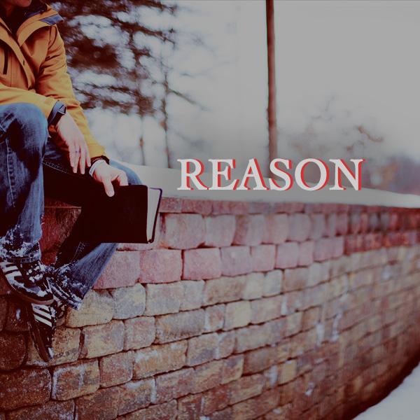 Reason, brick wall, sitting, reading, books, thinking